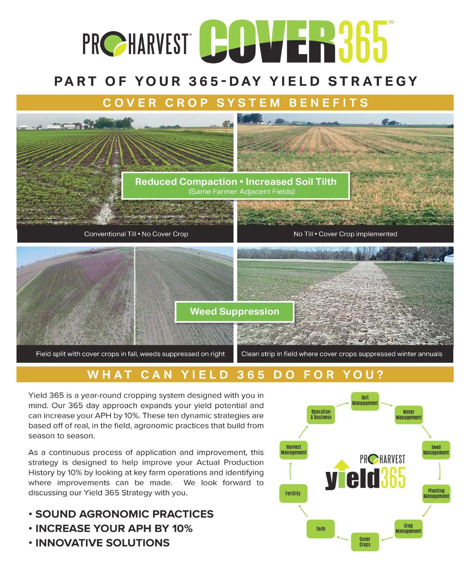 Cover Crop Booklet. Page 1
