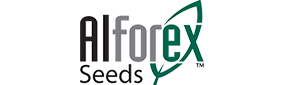 Alforex_Seeds2.png